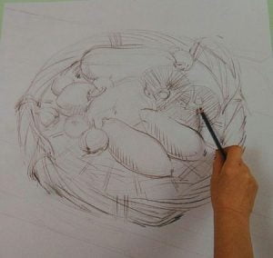 hand with a pencil sketching a basket with vegetables
