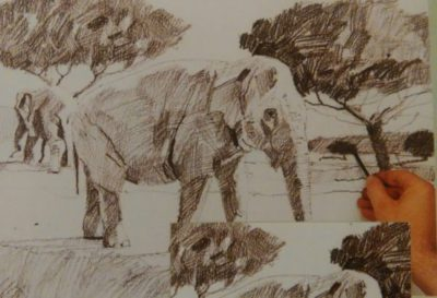 hand adding finishing details to the sketch of an elephant made with graphite
