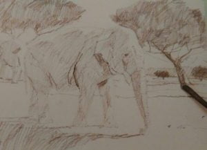 graphite stick sketching an elephant