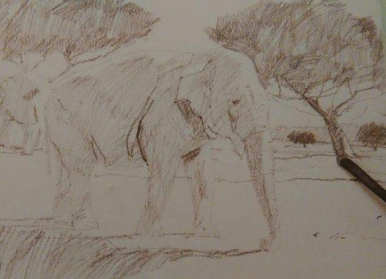 graphite stick sketching an elephant