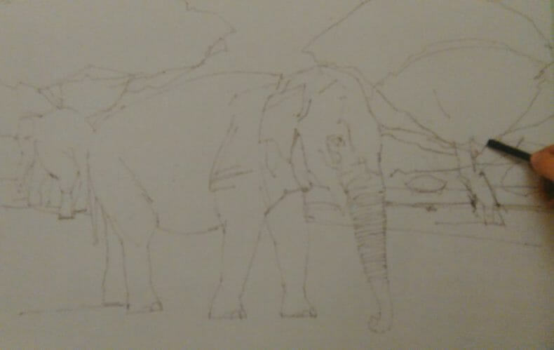 hand hollding graphite stick sketching an elephant