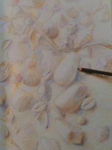 dark pastel pencil addin shades to a drawing of seashells