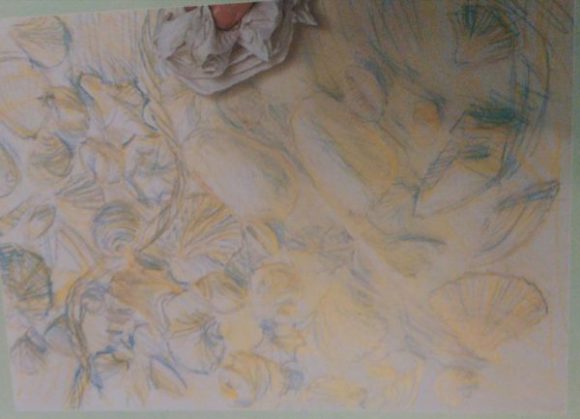 hand with a piece of cloth removing paint from a sketch of seashells made with pastel pencils