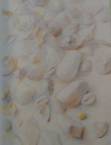 drawing of seashells made with pastel pencils