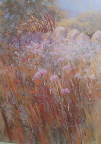 scattered paint drawing of wild flowers