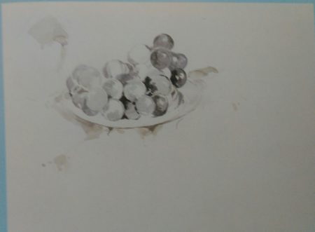 sketch of grapes made with watercolors