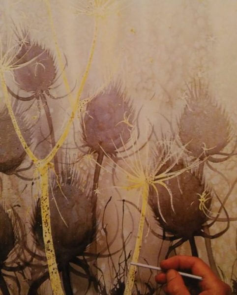 hand adding details to the sketch of thistle made with watercolors and salt