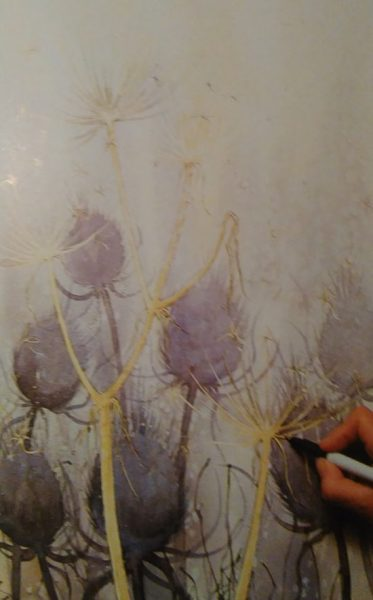 hand adding details to a sketch of a thistle